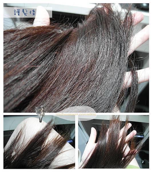 護髮後髮尾 (Copy).jpg