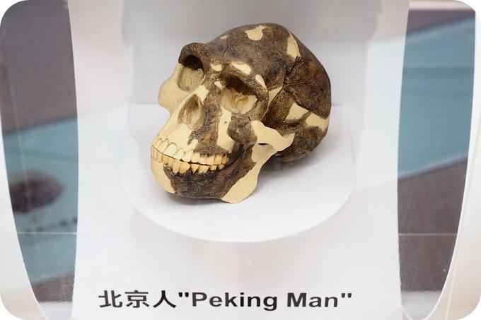 P7031545