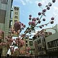 歡樂春節期間照片0124.jpg