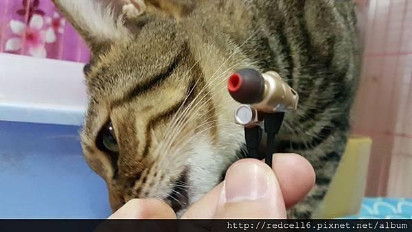 動聽動人ALTEAM AH-K97m圈鐵耳機領略心得分享