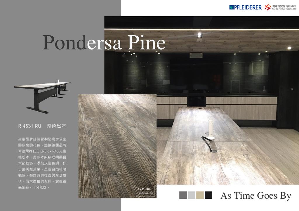 WEEK02:菲德萊PFLEIDERER - R4531色號-辦公室會議桌