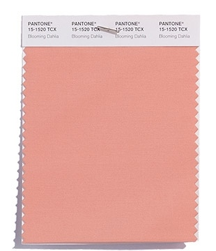 Pantone-Fashion-Color-Trend-Report-New-York-Spring-2018-Swatch-Blooming-Dahlia.jpg