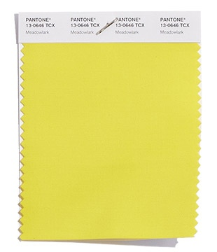 Pantone-Fashion-Color-Trend-Report-New-York-Spring-2018-Swatch-Meadowlark.jpg
