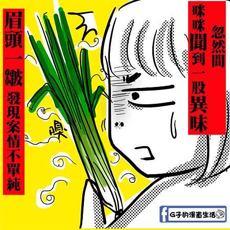 咪咪韭菜4.jpg
