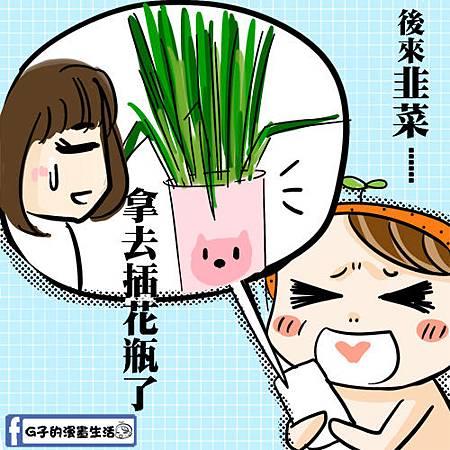 咪咪韭菜6.jpg