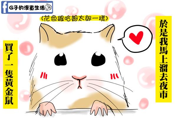 偷養寵物4.jpg