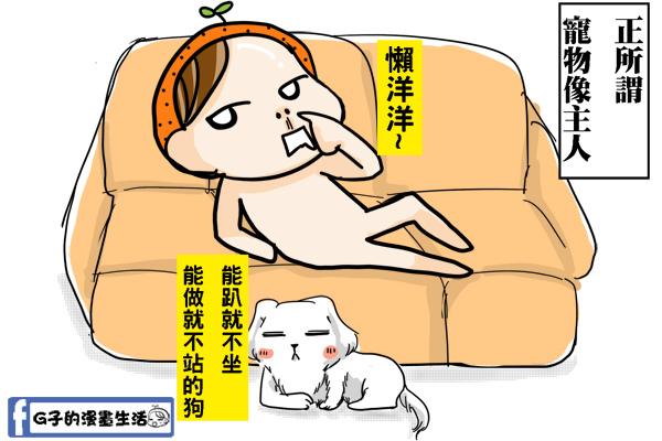 20140729狗像主人反差萌1.jpg