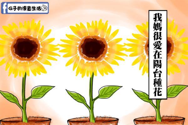 20141208媽媽植物向光性1.jpg