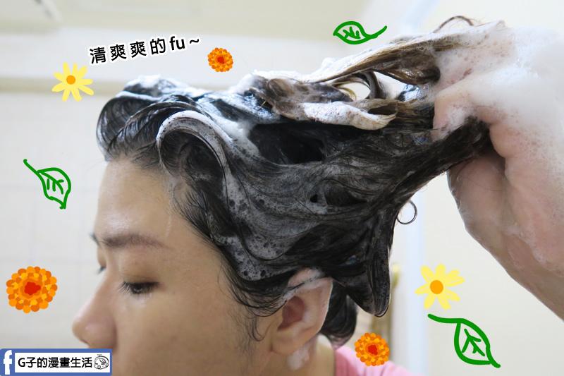 【thetsaio機植之丘】四方雲 護髮止癢洗髮乳 清爽~