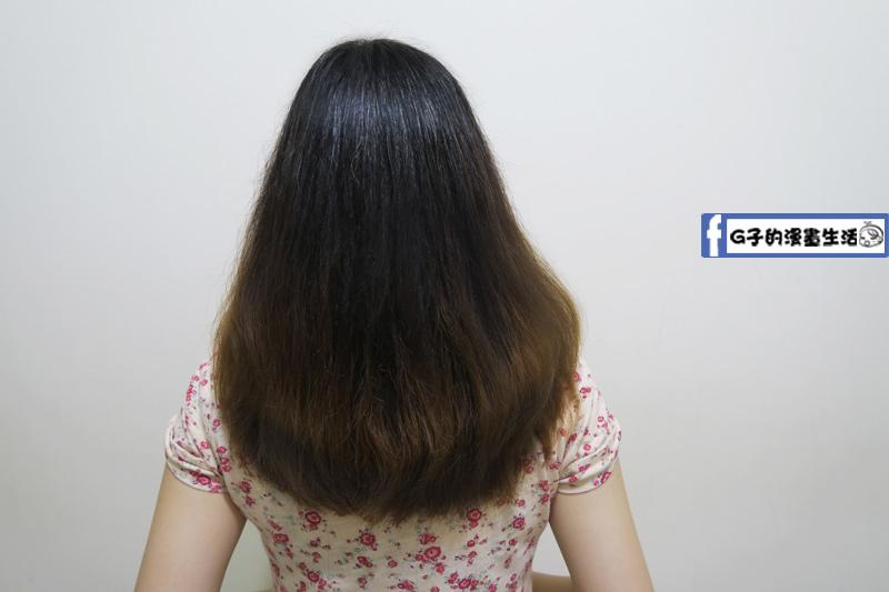 【thetsaio機植之丘】頭髮蓬鬆柔軟
