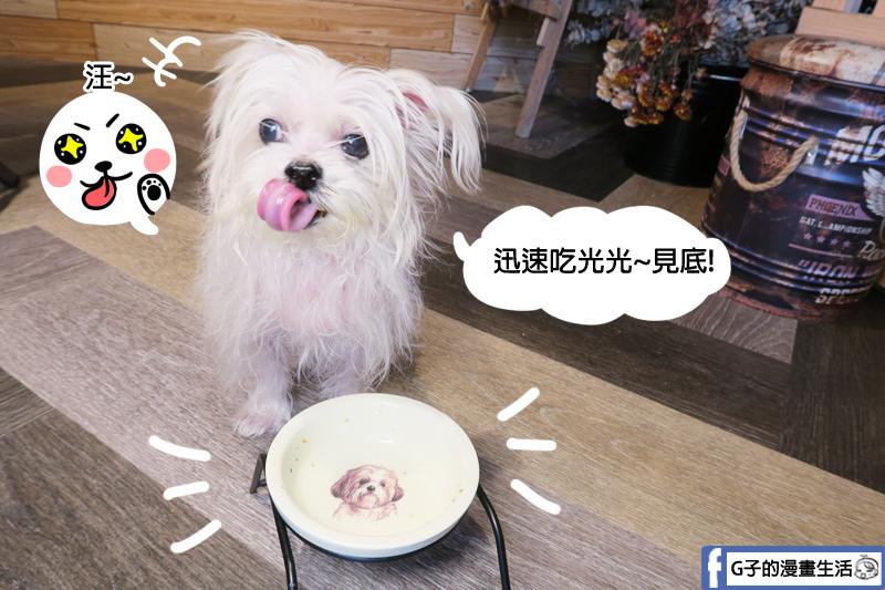 中和寵物餐廳-Dog Boss寵物友善餐廳,寵物鮮食YUKI吃光光 很便宜