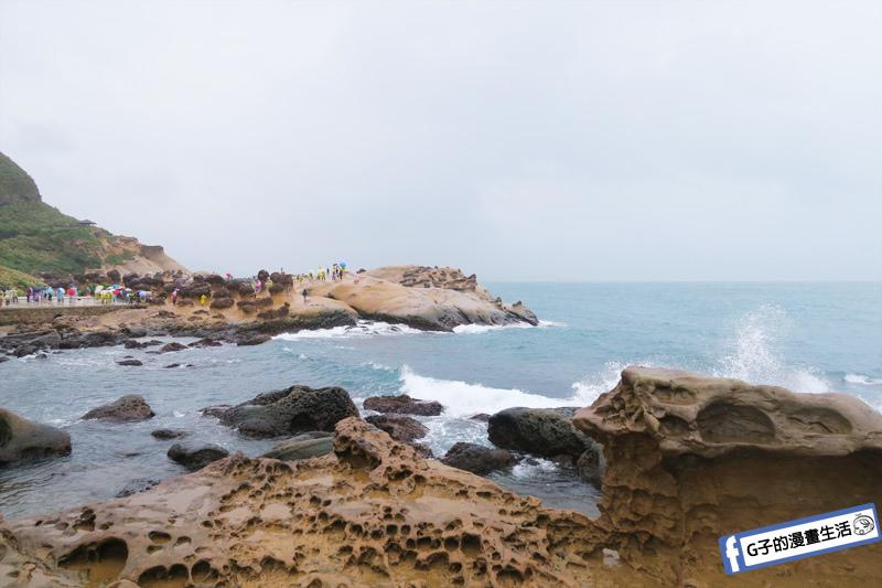 G子X哈旅行 台北包車一日遊.野柳地質公園 海浪侵蝕 岩石風化
