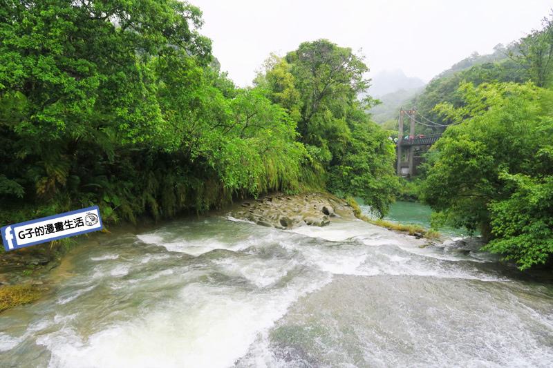 G子X哈旅行 台北包車一日遊.十分瀑布