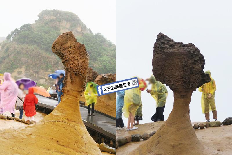 G子X哈旅行 台北包車一日遊.北海岸野柳地質公園.女王頭