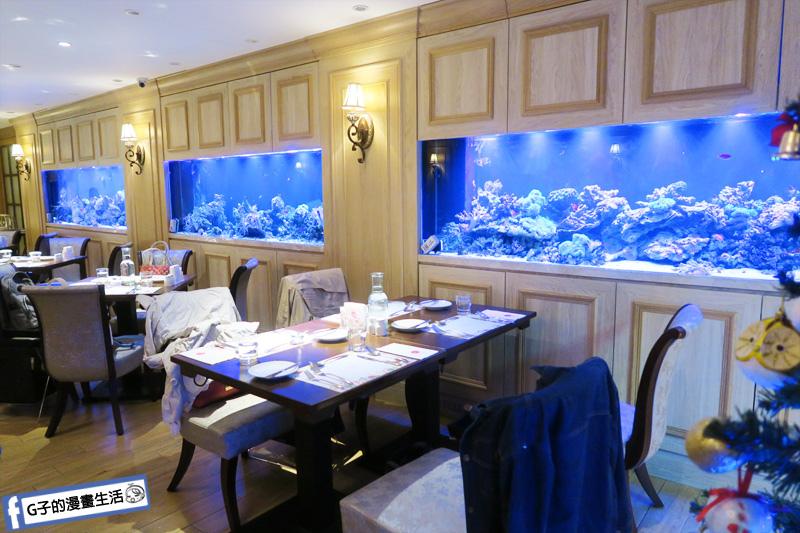 新莊慕拉諾義式餐廳 邊吃飯邊欣賞海洋生物