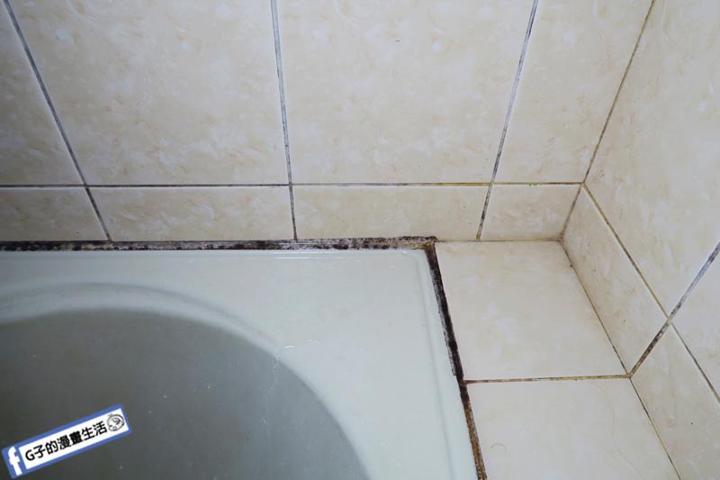 【AIMEDIA艾美迪雅】浴室專用強力去黴凝膠 日本製 去黴菌