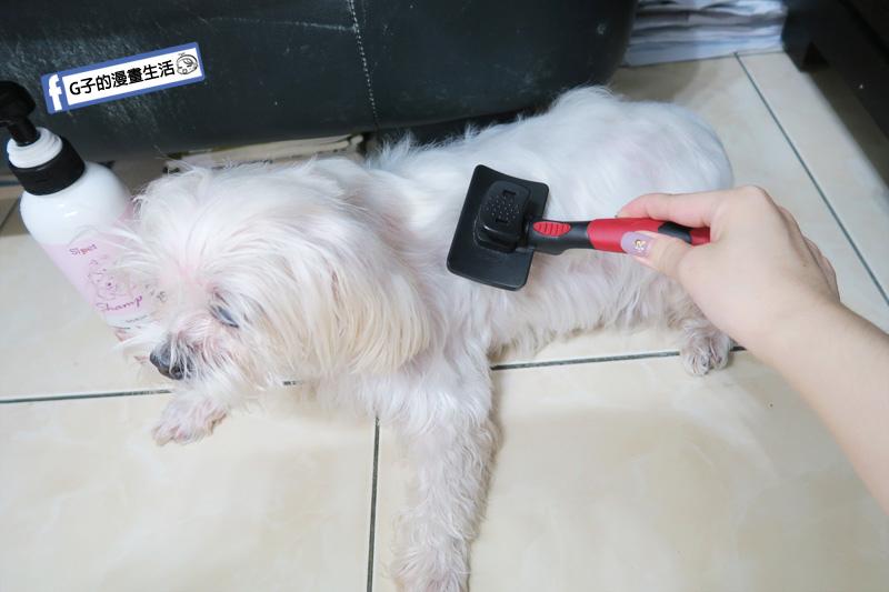 Sipet 寵物洗毛精 天然礦物能量-戀香櫻花.狗狗洗髮精.毛小孩推薦寵物沐浴乳