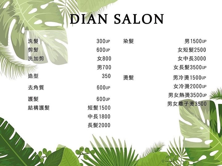 Dian 造型沙龍 美髮 MENU菜單