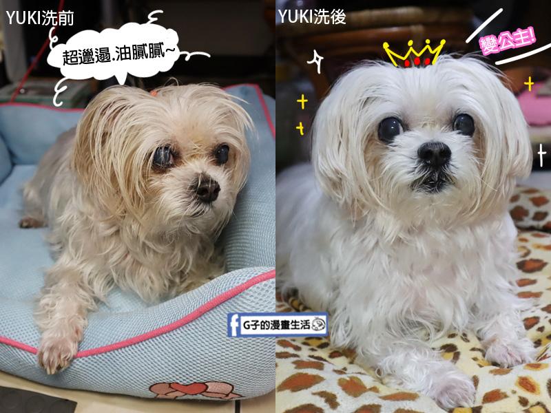 都你的毛 植萃修護洗毛精.洗毛精推薦.狗狗洗髮精.寵物皮膚病