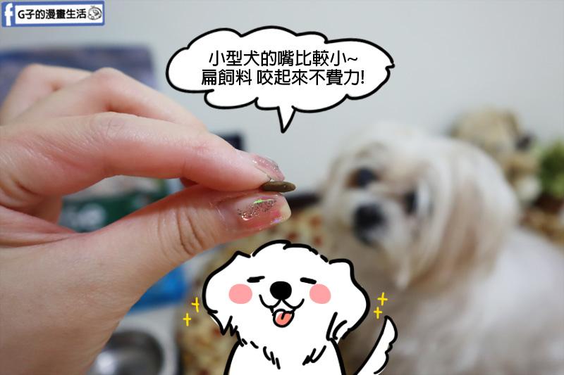 義大利寵糧瑪恩吉Monge.真野無穀飼料.小型成犬配方 (鯷魚+馬鈴薯+豌豆) .毛小孩.寵物飼料