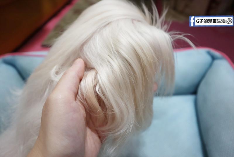毛起來MoaUP-美毛好膚質賞