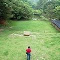 三義-綠葉方舟7