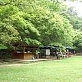 三義-綠葉方舟14