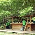 三義-綠葉方舟16