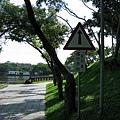 靜心湖09.JPG