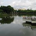 靜心湖36.JPG