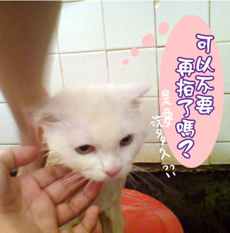 洗澡記03.jpg