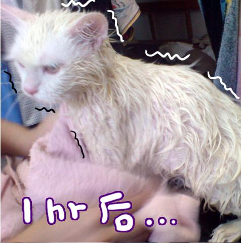 洗澡記04.jpg