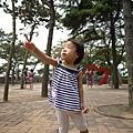 20120622-24青島 (20)