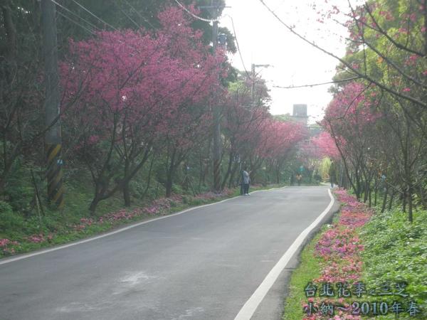 9901-22 陽明山花季_0069.jpg