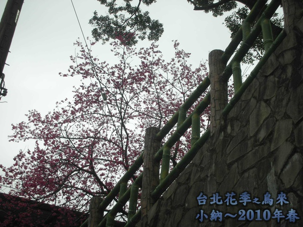 9902-3 春戀烏來_0001.jpg
