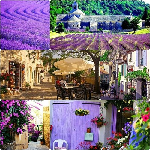 ❤Provence