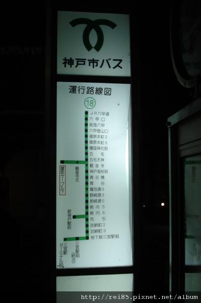 DSC02449.JPG