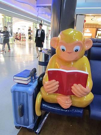 小港機場內愛看書的猴子