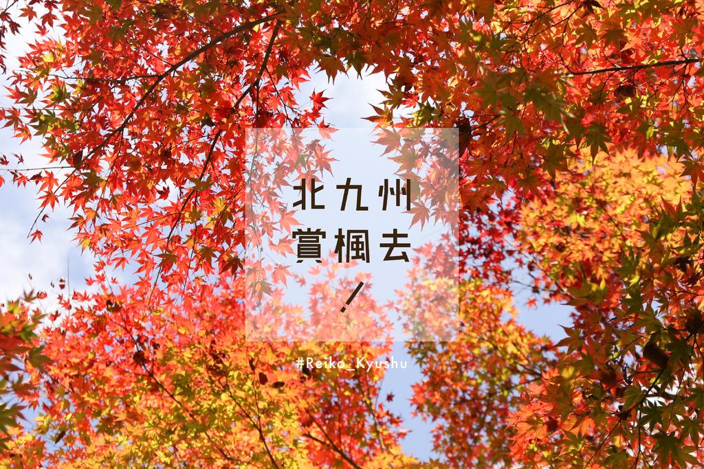 IMG_8889cover.jpg