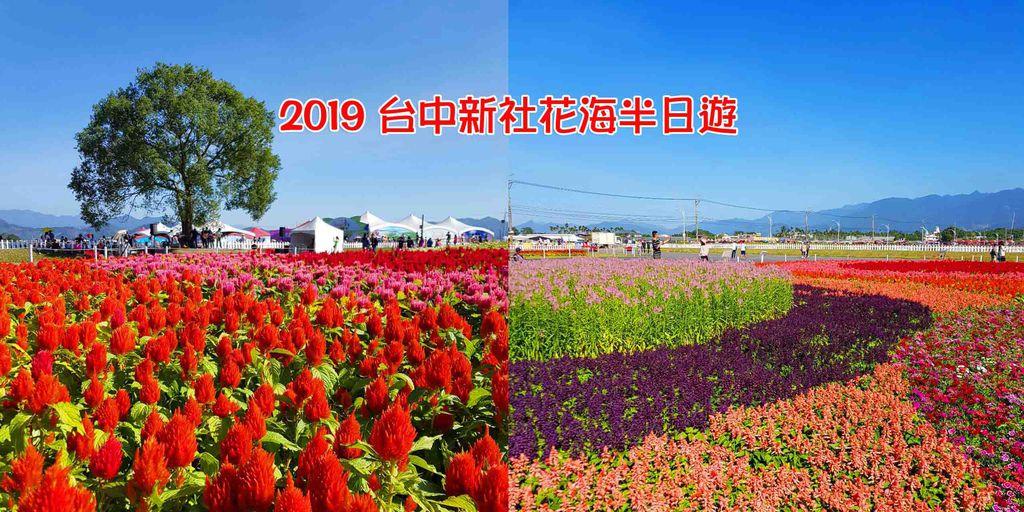 2019新社花海.jpg