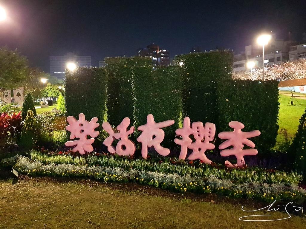 東湖樂活公園夜櫻 (4).jpg