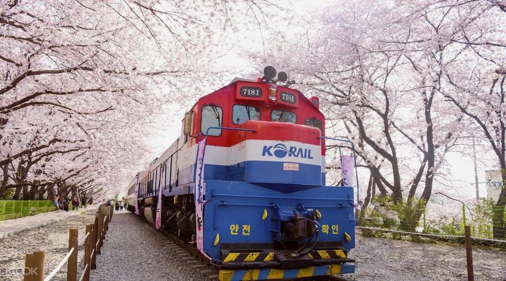 慶和站KLOOK.jpg