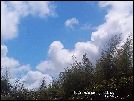 2011-07-30 13.52.03.jpg