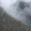 霧中北橫 070.jpg
