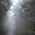 雨中北橫 080.jpg
