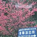 北橫榮華段 068.jpg