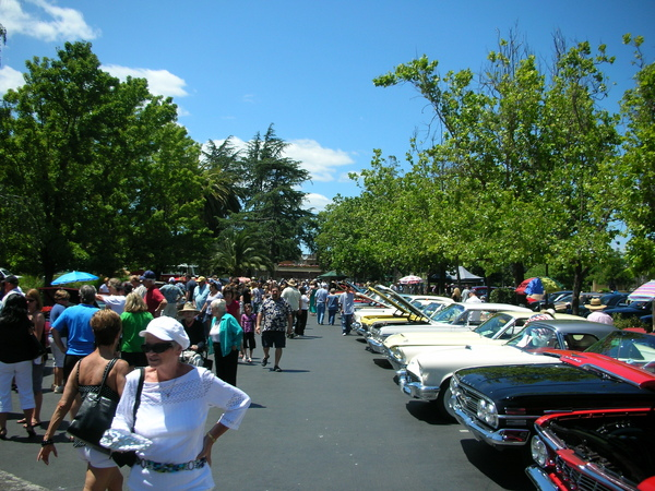 Father's Day Auto Show @ Yountville