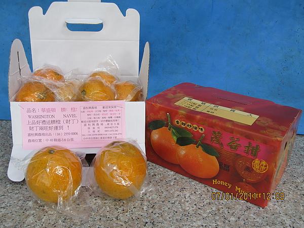 12粒裝臍橙.JPG