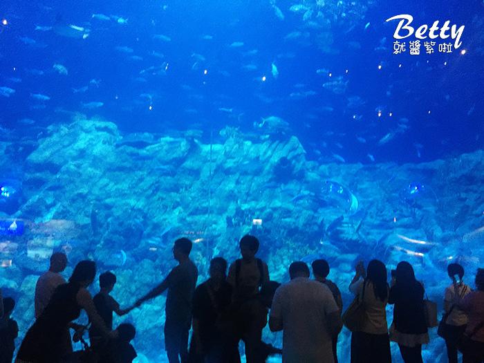 香港海洋公園 (3).jpg
