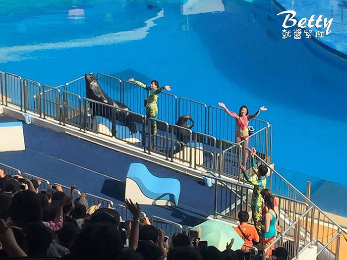 香港海洋公園 (14).jpg